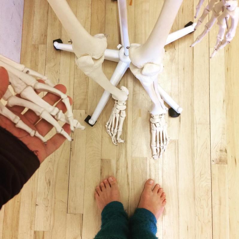 somatic-anatomy