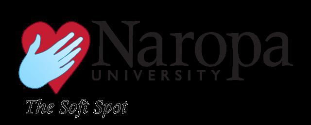SoftSpot_Logo_1